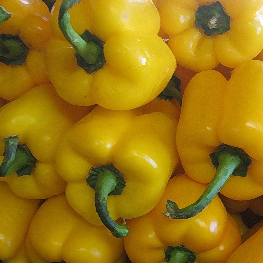 Yellow Pepper by John Vincent Palozzi
