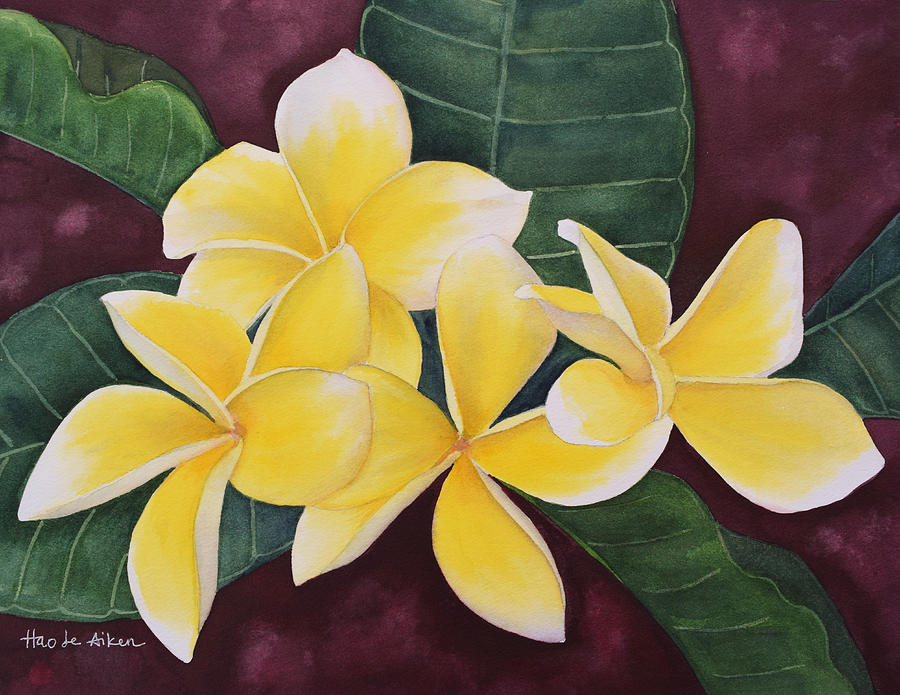 Yellow Plumerias I - Watercolor by Hao Aiken