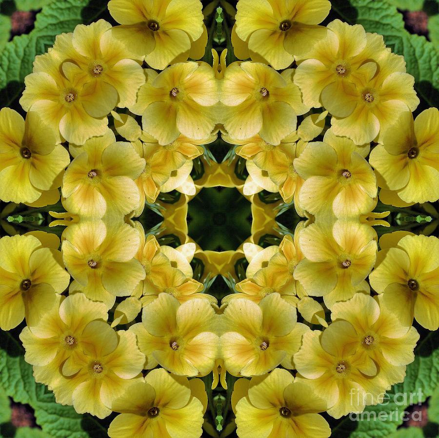 Yellow Primrose Kaleidoscope Digital Art By Smilin Eyes Treasures