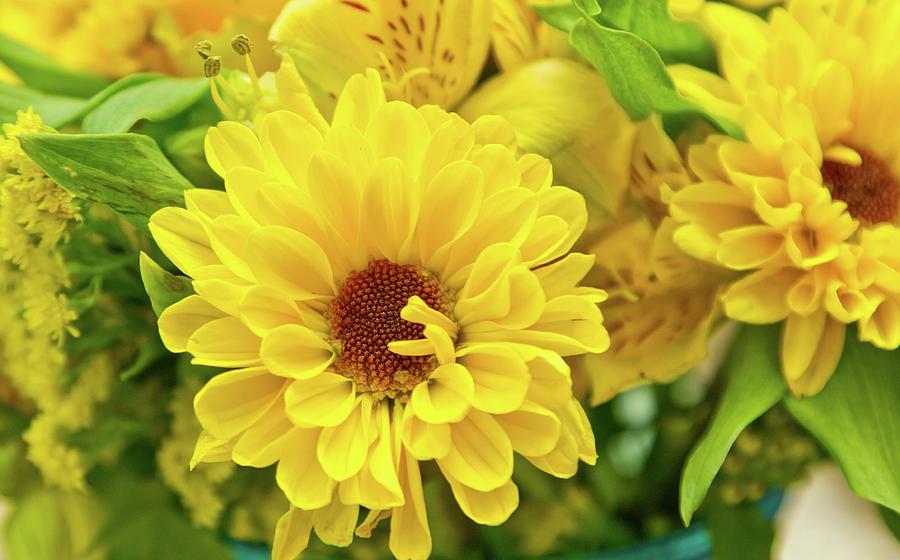 Yellow by Ree Reid