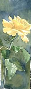 Rose Painting - Yellow Rose by Diane Ziemski