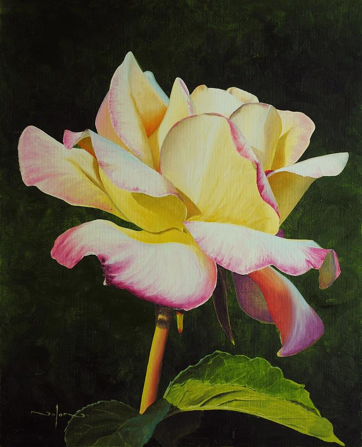 Oil Painting - Yellow Rose by Nolan Clark