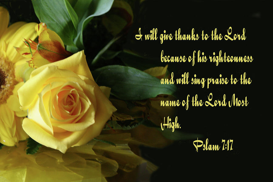 Scripture Photograph - Yellow Rose Ps.7 V 17 by Linda Phelps