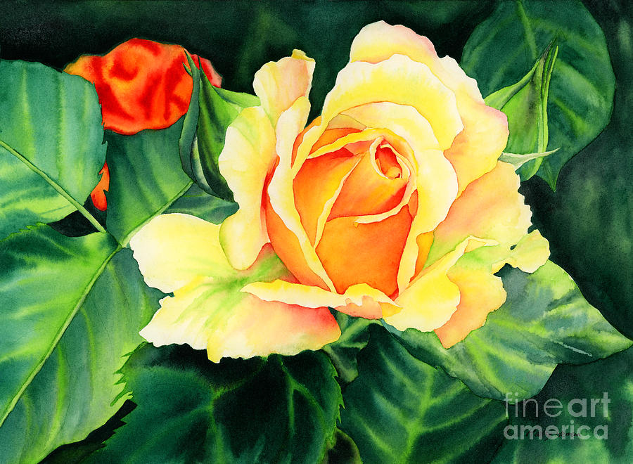 Watercolor Painting - Yellow Roses by Hailey E Herrera