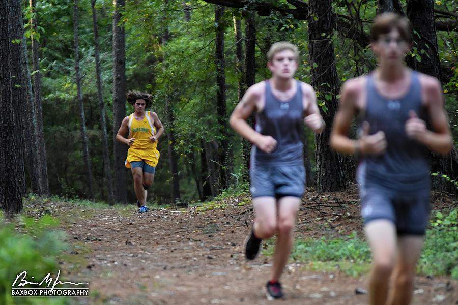Yellow Runner Photograph by Brian Jones