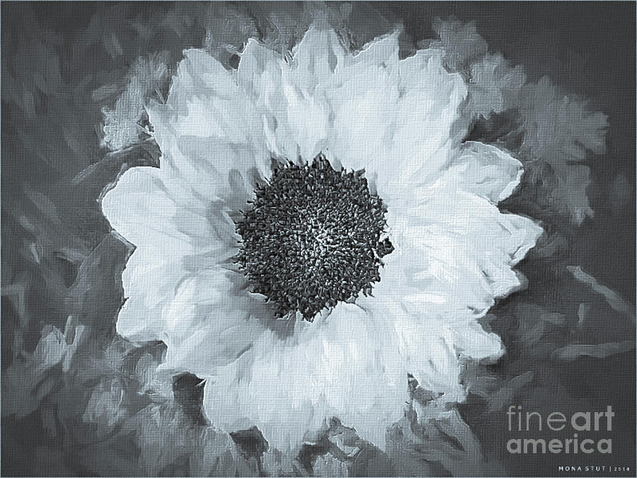 Yellow Sunflower Glow Bw Digital Art