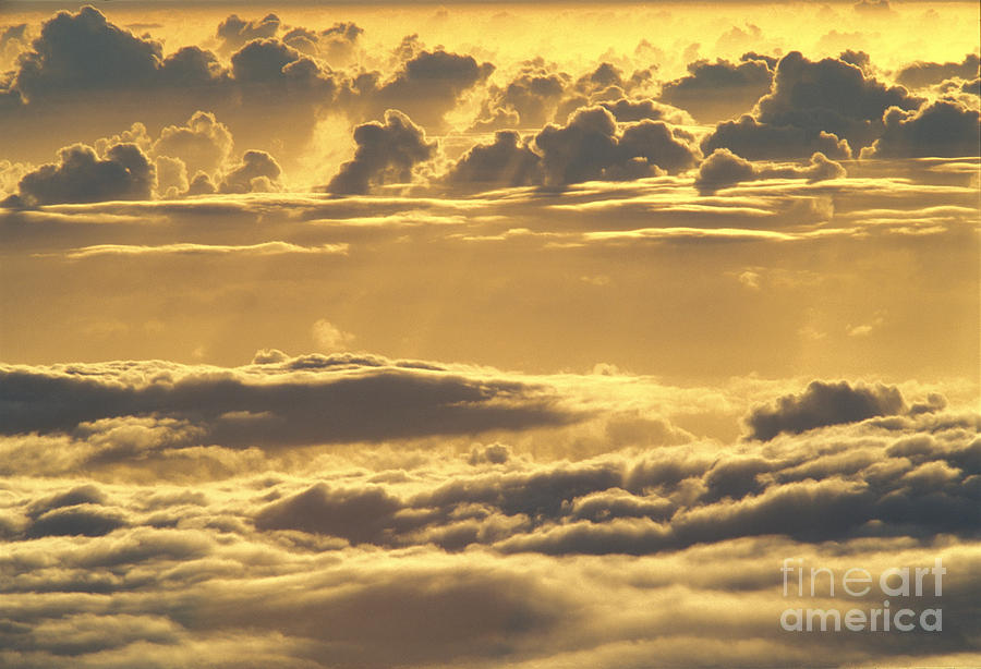 Above Photograph - Yellow Sunset by Carl Shaneff - Printscapes