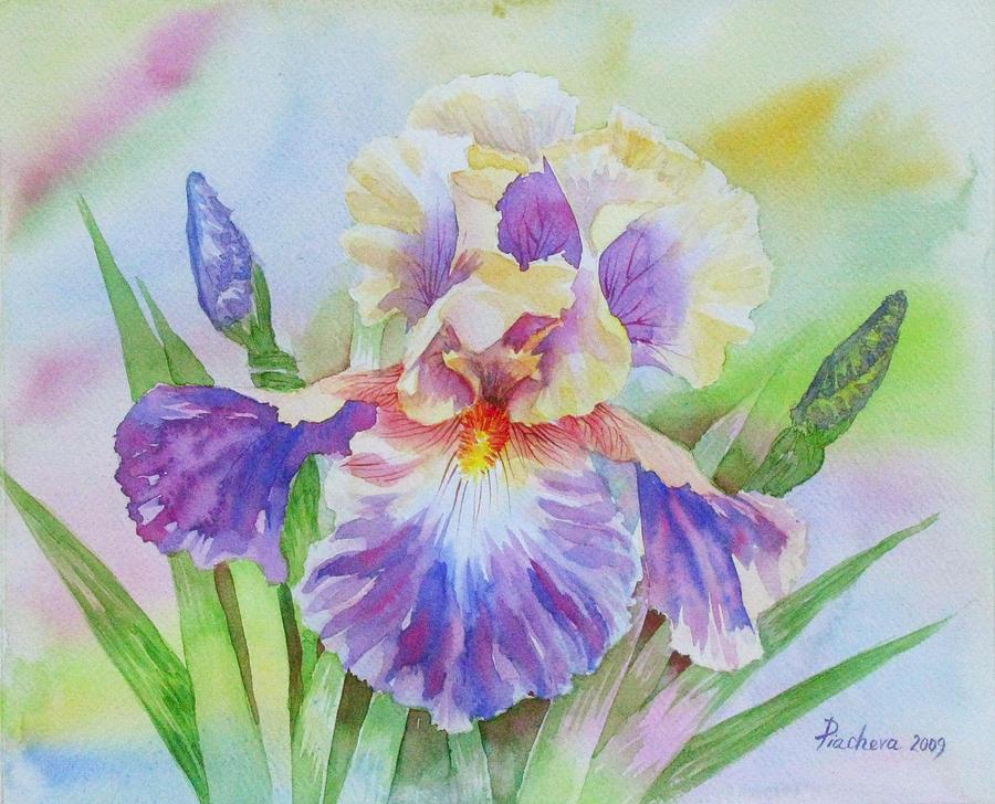 Yellow Painting - Yellow Violet Iris II by Natalia Piacheva
