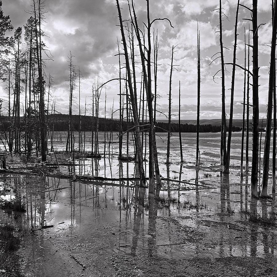 America Photograph - Yellowstone 145 by Ingrid Smith-Johnsen