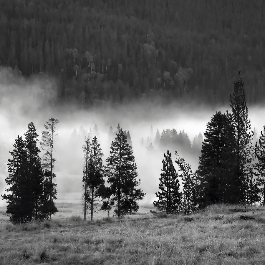 America Photograph - Yellowstone 157 by Ingrid Smith-Johnsen