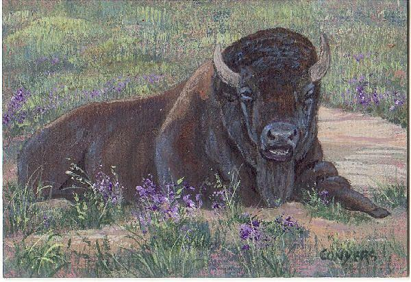 Bison Painting - Yellowstone Bison by Peggy Conyers
