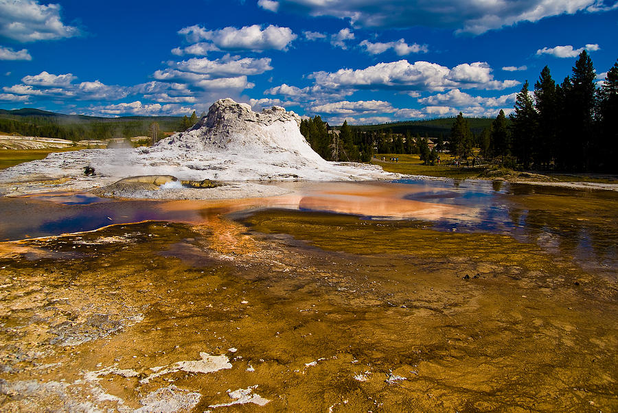 National Park Photograph - Yellowstone Geyser by Patrick  Flynn