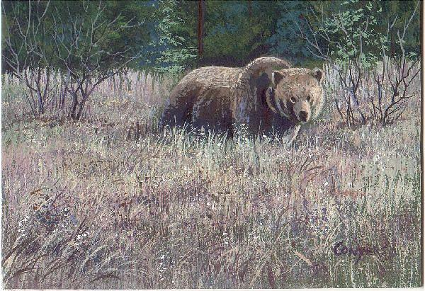 Bear Painting - Yellowstone Grizzley by Peggy Conyers