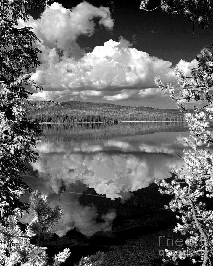 Berry Photograph - Yellowstone Lake by Diane E Berry