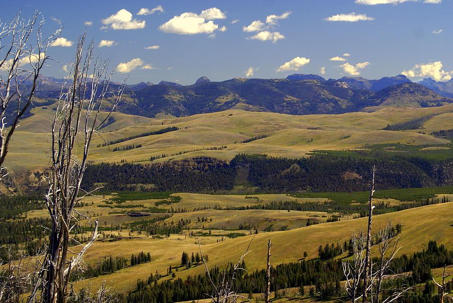 Yellowstone National Park Photograph - Yellowstone Landscape 2 by Marty Koch