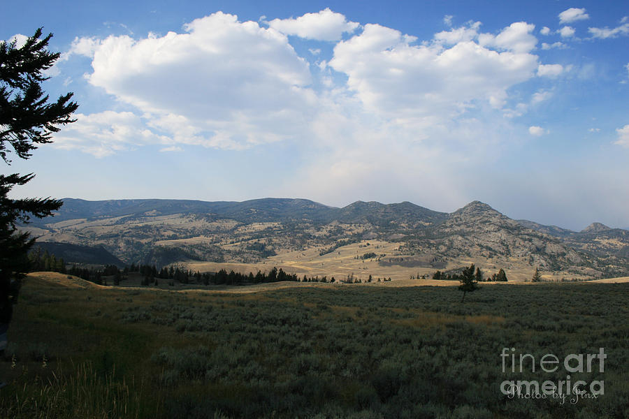 Landscapes Digital Art - Yellowstone National Park by Jinx Farmer