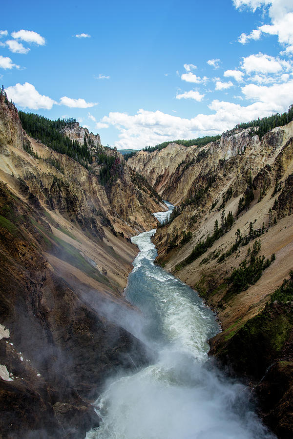 Yellowstone River Below Lower Falls 3P by Frank Madia