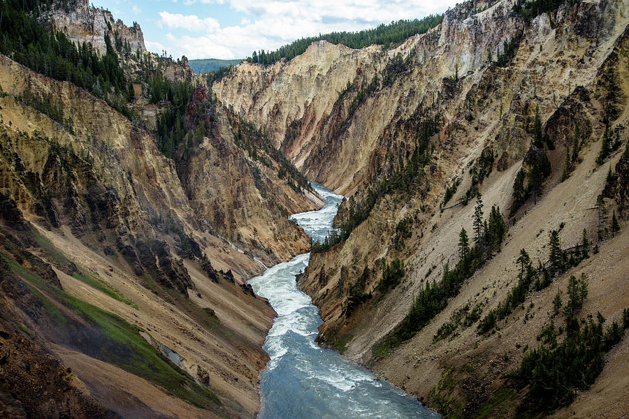 Yellowstone River Below Lower Falls by Frank Madia