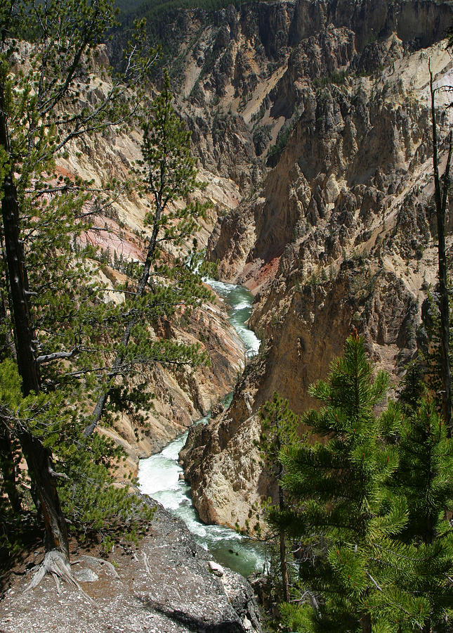 Yellowstone Photograph - Yellowstone River by Linda Phelps