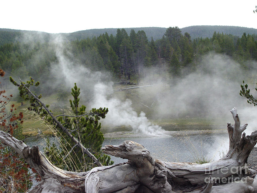 Yellowstone Photograph - Yellowstone View by Leigh Karchner