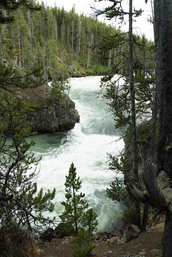 Yellowstone National Park Photograph - Yellowstone Waterfall by Linda Kerkau