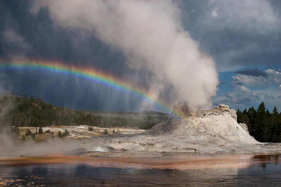 Yellowstone's Castle Geyser by Rick Pisio