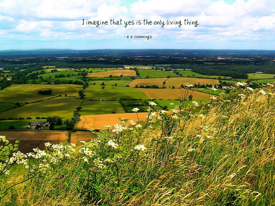 Affirmation Photograph - Yes Is The Only Living Thing by Jen White