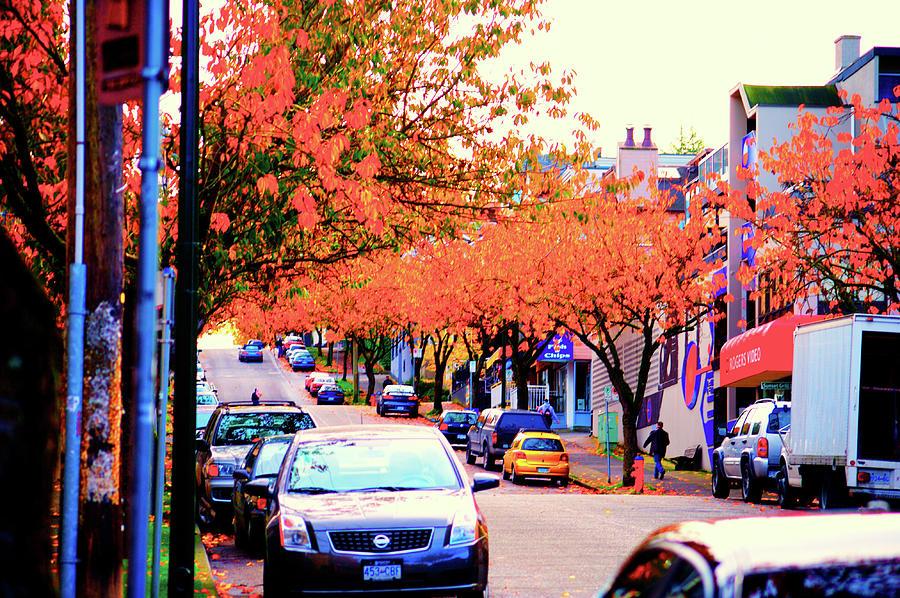 Yew Photograph - Yew Street Autumn by Paul Kloschinsky