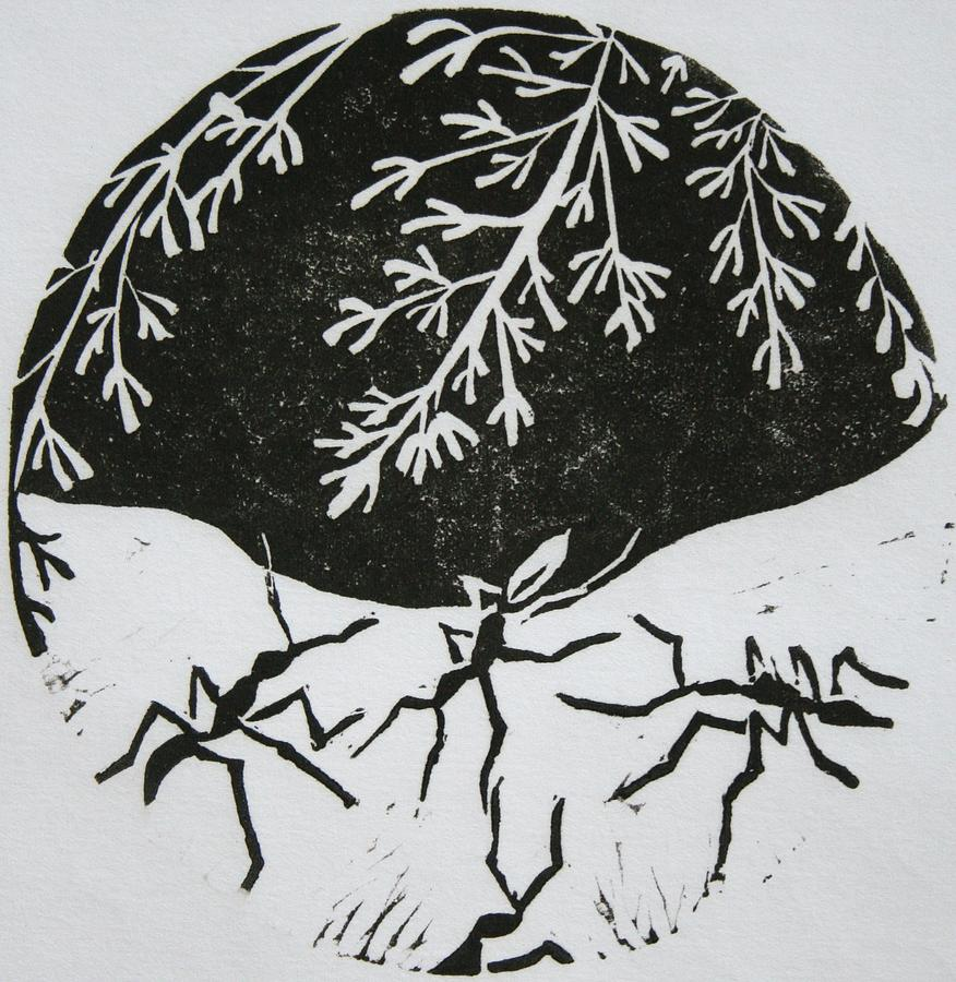 Black And White Drawing - Yin Yang by Pati Hays