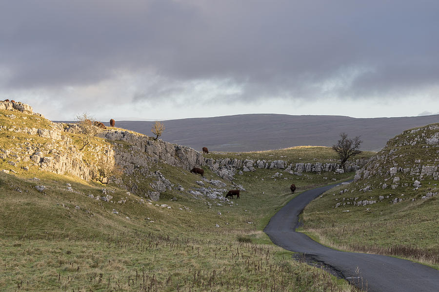 Yorkshire Dales - 9 Photograph