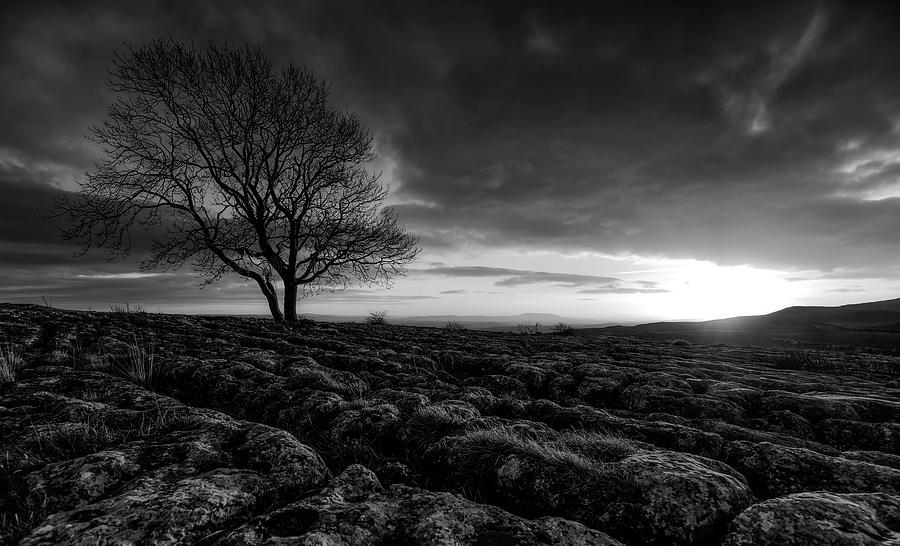 Yorkshire Photograph - Yorkshire Serenity by Unsplash