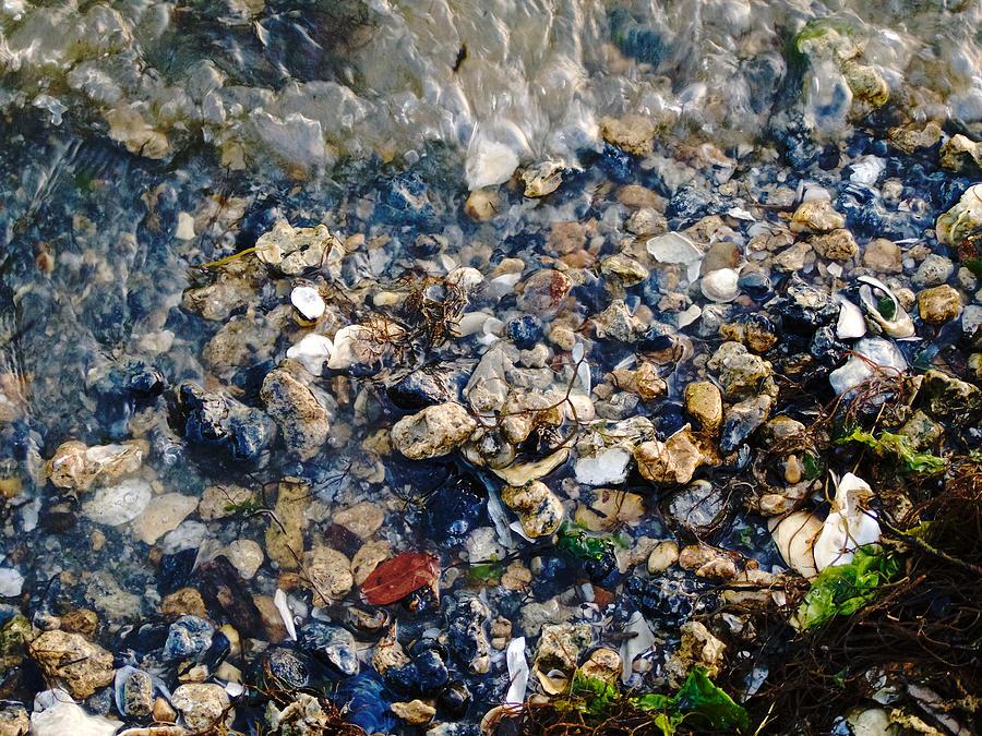 Beach Photograph - Yorktown Beach  by Lara Morrison