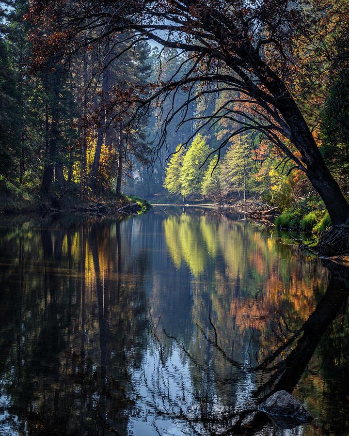 Yosemite Photograph - Yosemite After Halloween by Jeff Sullivan