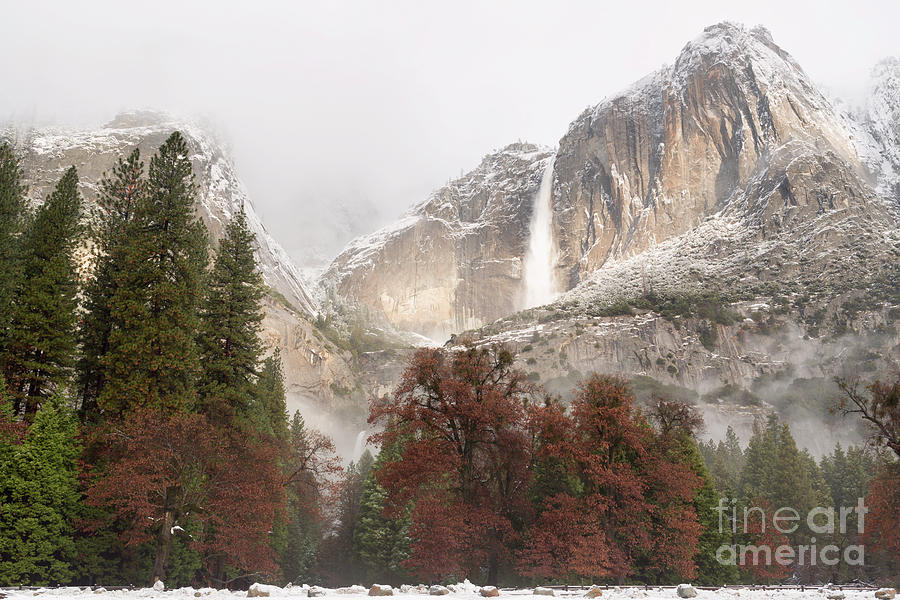 California Photograph - Yosemite Falls by Richard Sandford