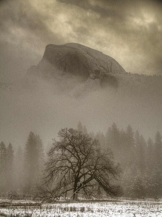 Beautiful Photograph - Yosemite In The Winter by Connie Cooper-Edwards