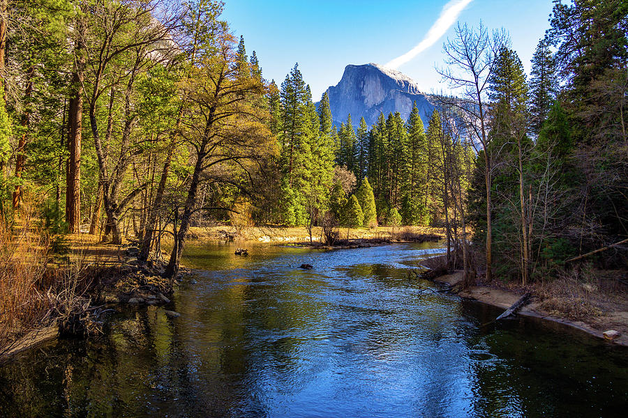 California Photograph - Yosemite Merced River With Half Dome by Roslyn Wilkins
