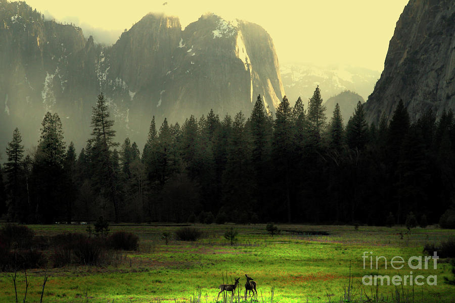 Landscape Photograph - Yosemite Village Golden by Wingsdomain Art and Photography