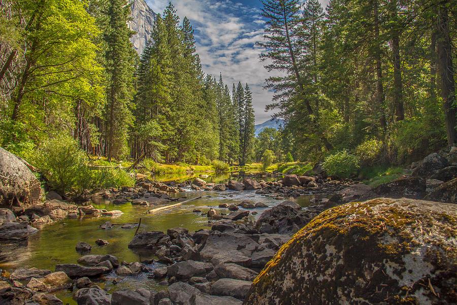 Acrylic Prints Photograph - Yosemites N Park by Brian Williamson