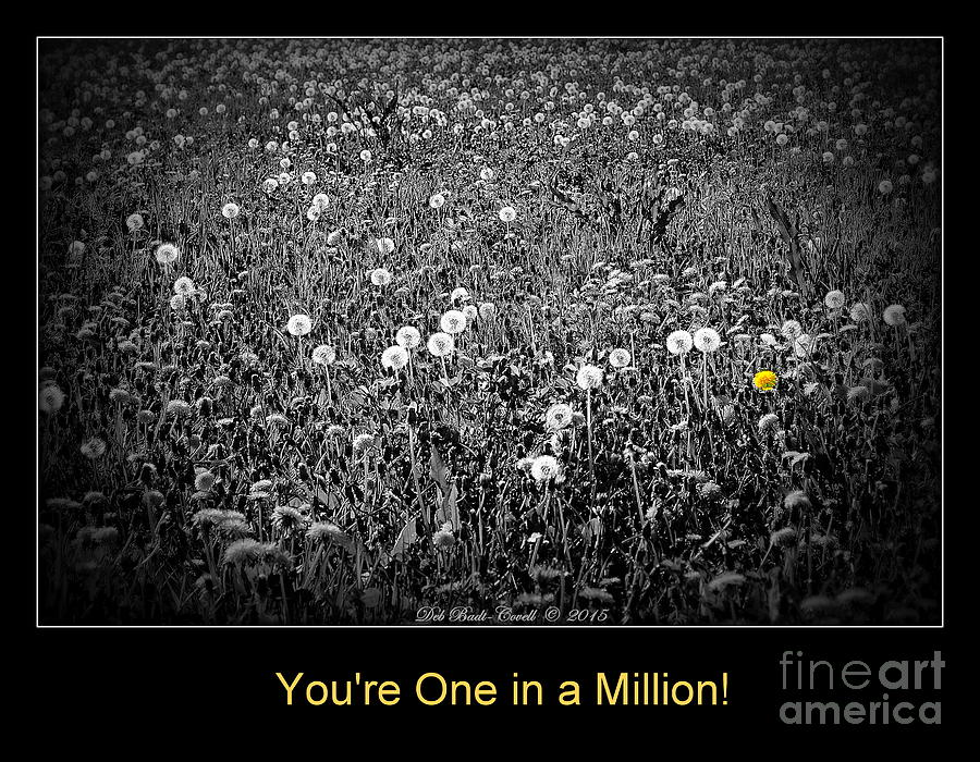 One Photograph - You Are One In A Million by Deb Badt-Covell