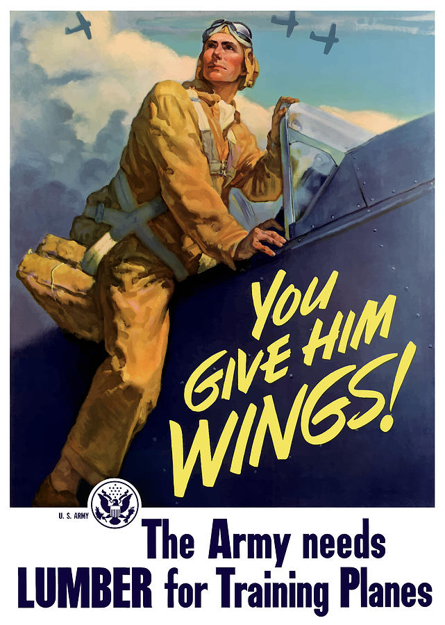 Aircraft Painting - You Give Him Wings - Ww2 by War Is Hell Store