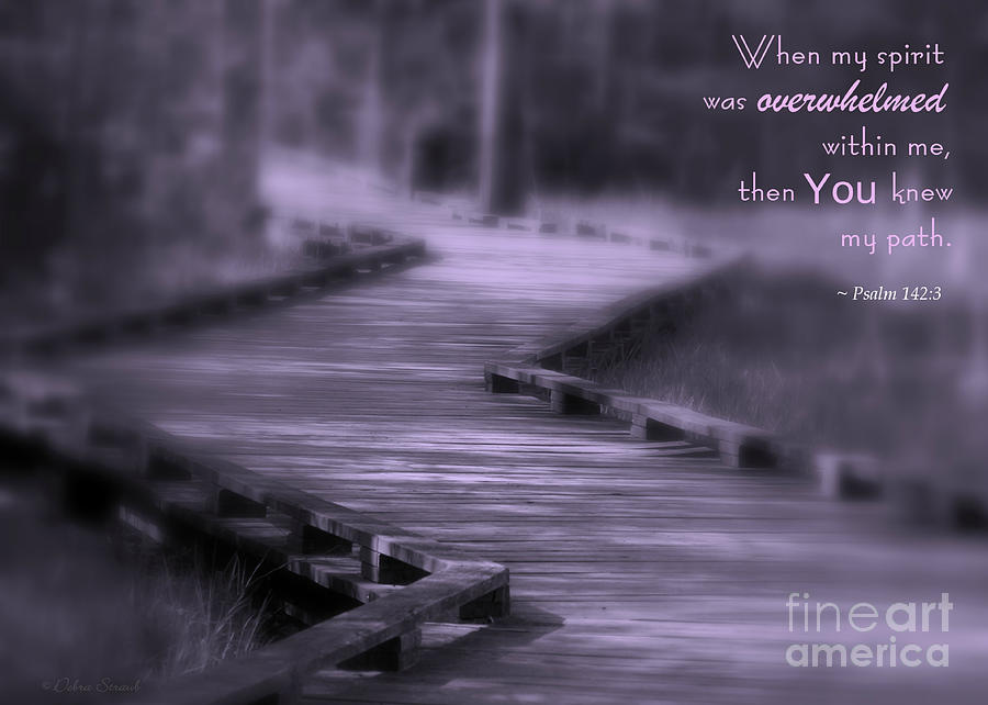 Scripture Photograph - You Knew My Path by Debra Straub