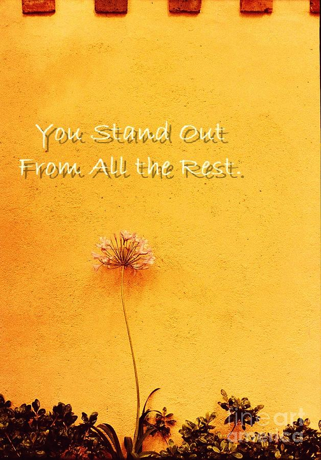 You Stand Out Photograph