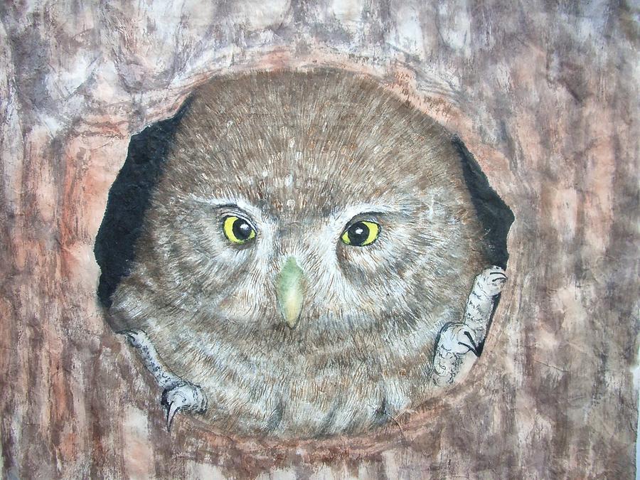 Nature Painting - Young Owl by Jian Hua Li