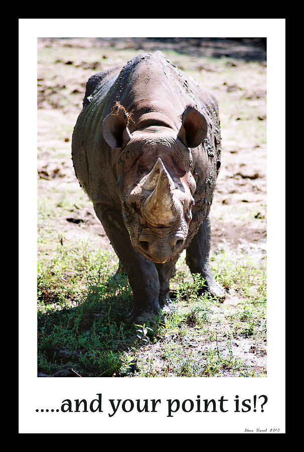 Rhino Photograph - Your Point Is by Steve Karol