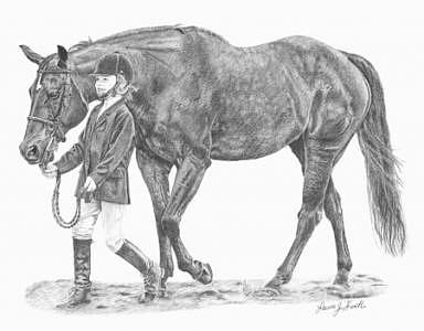 Horse Drawing - Youth And Experience by Laura Smith