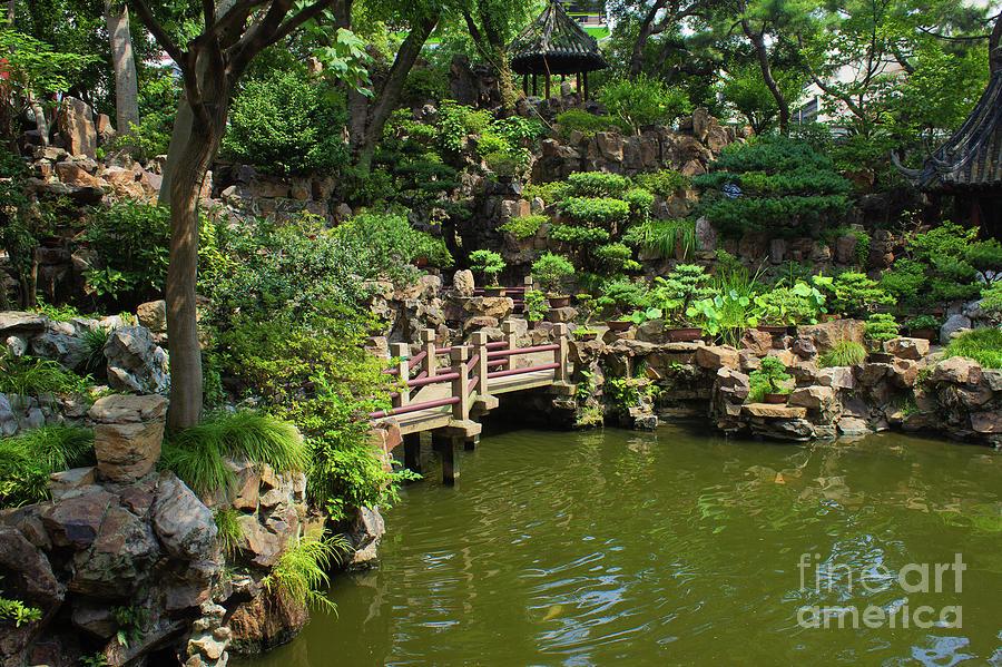 Yu Garden Photograph by Alice Mainville