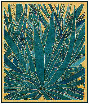 Landscape Print - Yucca Baccata  by Harriet Greene