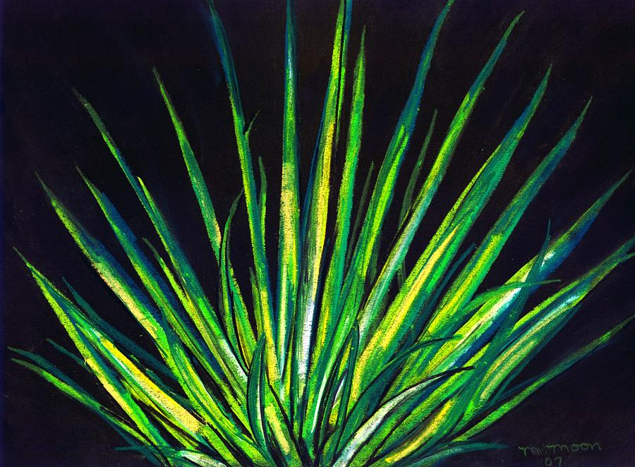Yucca Drawing - Yucca by Melvin Moon