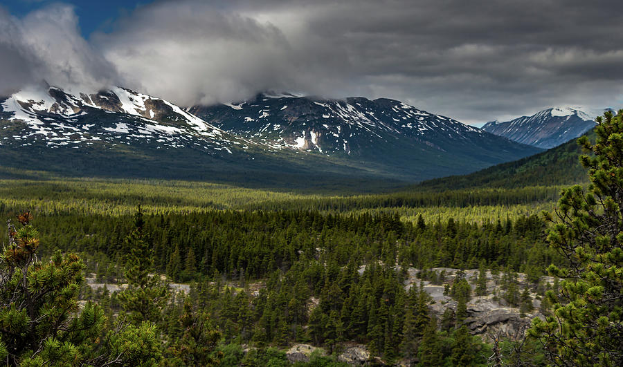 Yukon Wilderness by Ed Clark