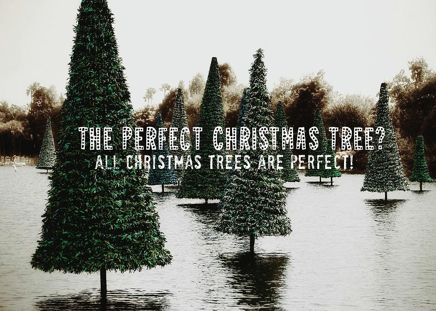 Christmas Photograph - Yule Pool Quote by JAMART Photography